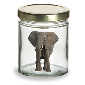 Elephant In A Jar